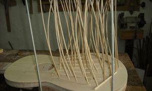 Веерная пружинная система