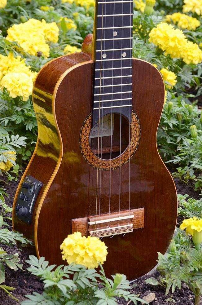 Изготовление традиционно 5-струнной укулеле-концерт.